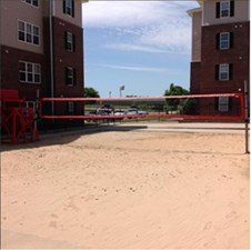 Volleyball at Listing #150365
