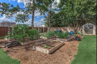 Garden at Listing #136973