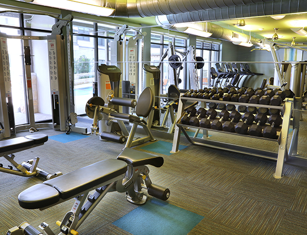 Fitness at Listing #239569