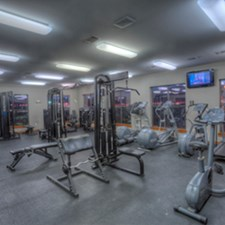 Fitness at Listing #144137