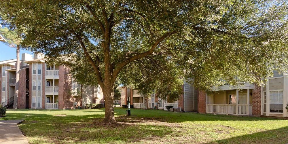 Champion Oaks Apartments Houston, TX