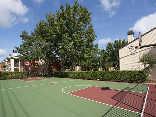 Basketball at Listing #138923