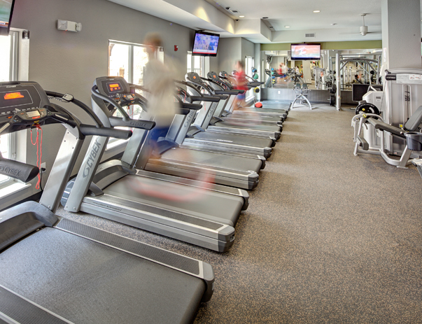 Fitness at Listing #140541