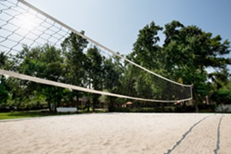 Volleyball at Listing #140079