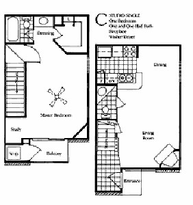 750 sq. ft. C1&C2 floor plan