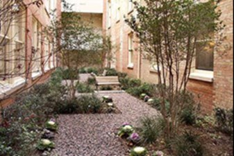 Courtyard at Listing #138043