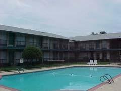 Pool at Listing #137379
