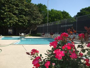 Pool at Listing #135936