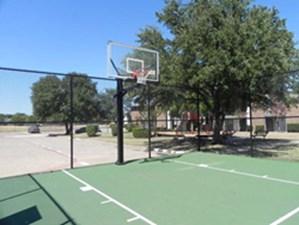 Basketball at Listing #137101
