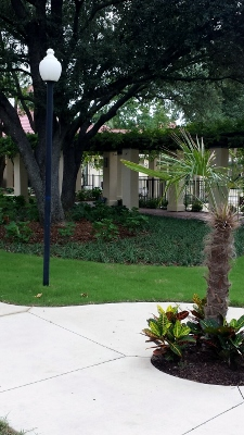 Courtyard at Listing #135883