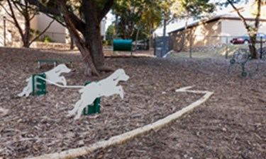 Dog Park at Listing #140696