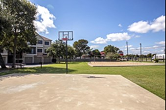 Basketball at Listing #140607