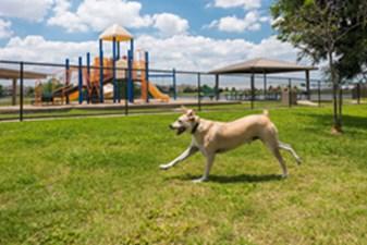 Dog Park at Listing #137651