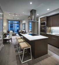 Living/Kitchen at Listing #264044