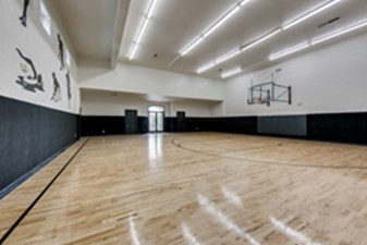 Basketball at Listing #144257
