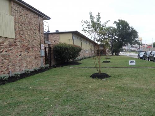 Shavelson Apartments Houston TX