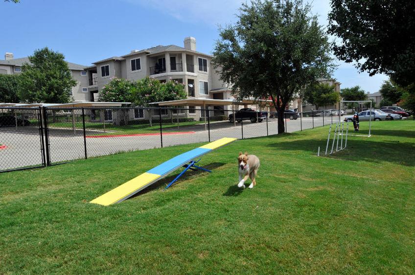 Dog Park at Listing #137786