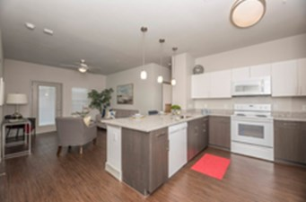 Living/Kitchen at Listing #286593