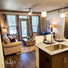 Living/Kitchen at Listing #311424