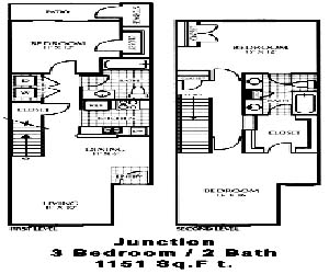 1,151 sq. ft. C1 floor plan