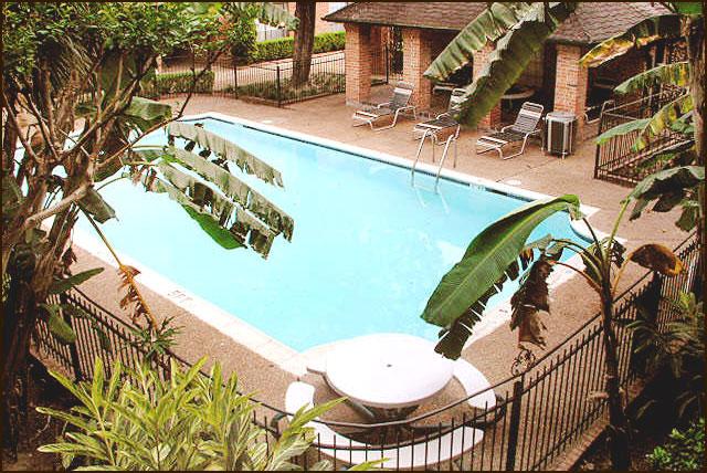 Pool at Listing #139633