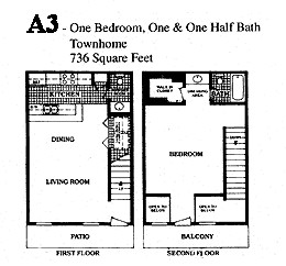 736 sq. ft. D floor plan