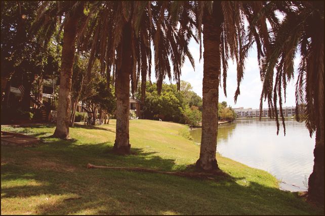 Colony Oaks by the Bay Apartments Houston, TX