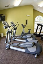 Fitness at Listing #138782
