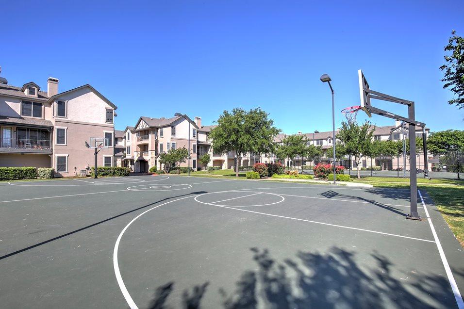 Basketball at Listing #140693