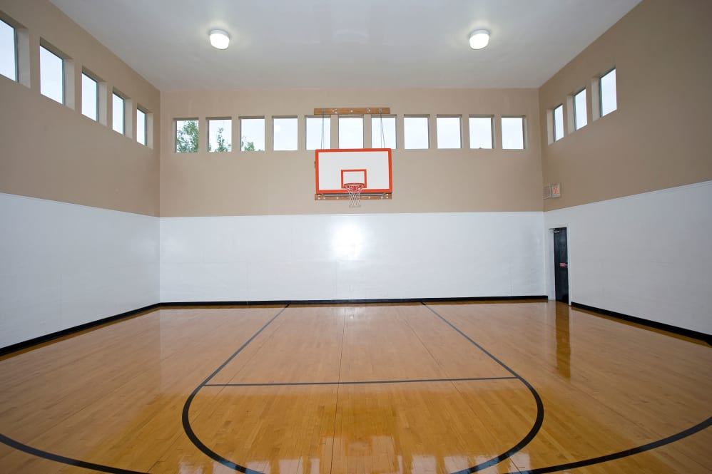 Basketball at Listing #137710