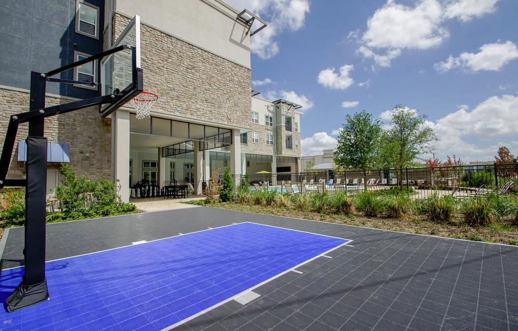 Basketball at Listing #242447