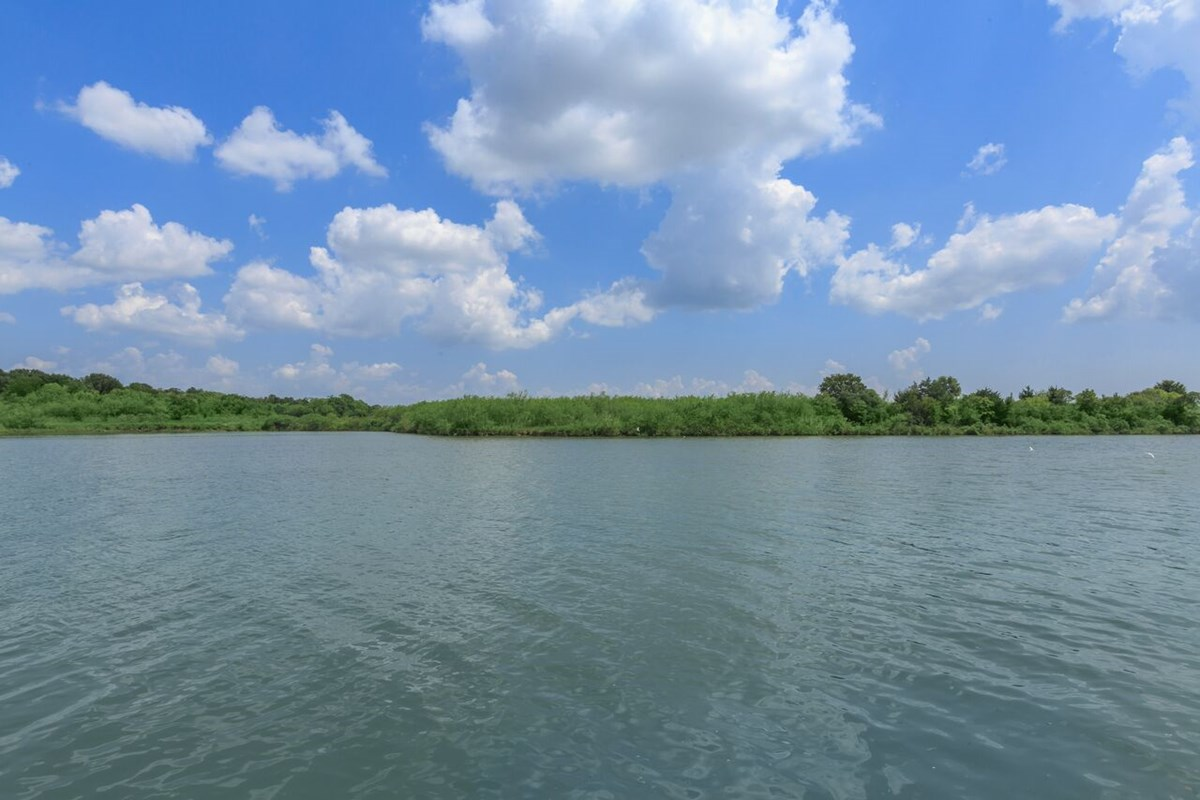 Waterfront at Listing #138372