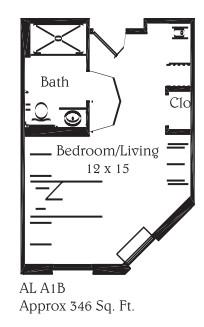 346 sq. ft. A1B floor plan