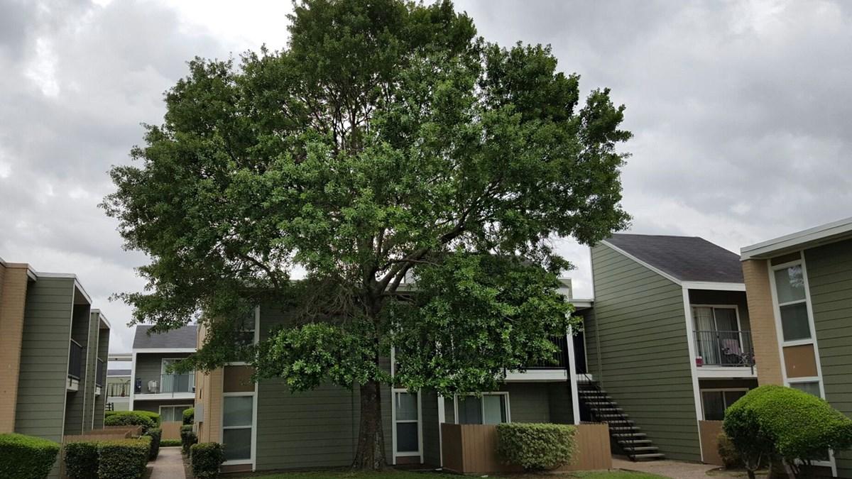 Edgebrook Apartments Houston TX