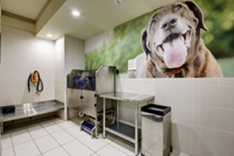 Pet Spa at Listing #146267
