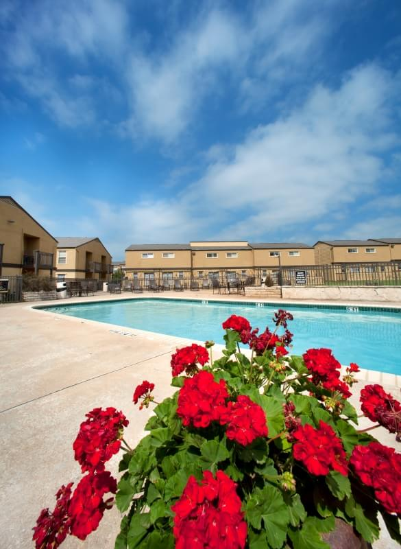 Pool at Listing #136032
