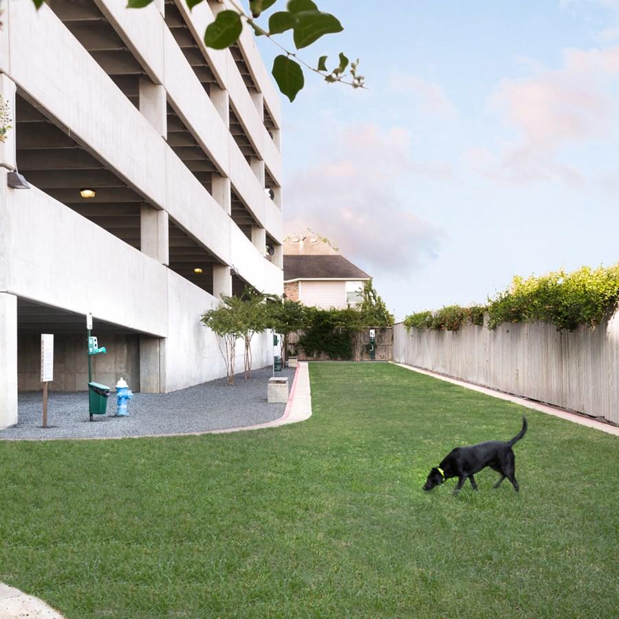 Dog Park at Listing #227127