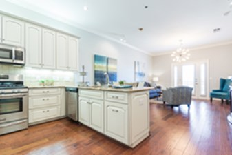 Living/Kitchen at Listing #266409