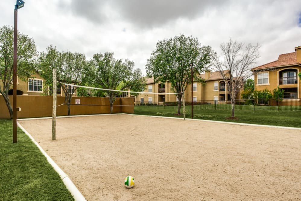 Volleyball at Listing #137583