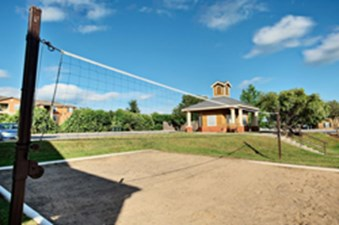 Volleyball at Listing #140602