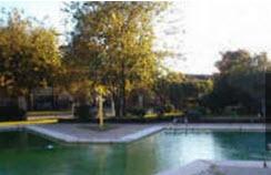 Pool at Listing #255630