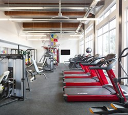 Fitness at Listing #258972