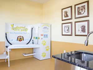 Pet Spa at Listing #251156