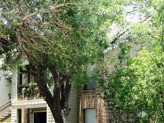 Silver Creek Apartments Austin TX