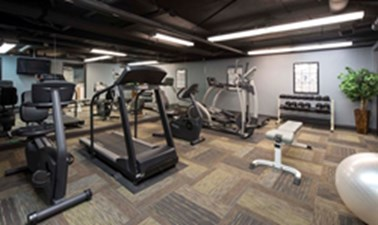 Fitness at Listing #136459