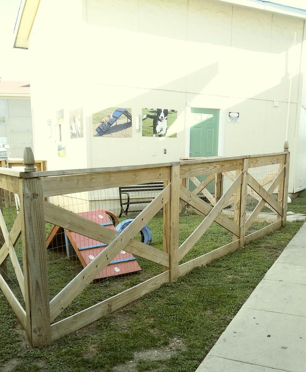 Dog Park at Listing #140812