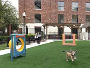 Dog Park at Listing #224324