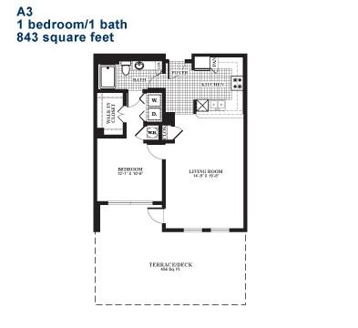 843 sq. ft. A3.1 floor plan