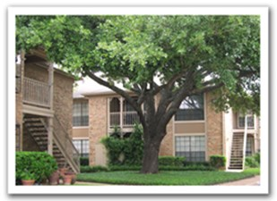 Woodvine Apartments Houston Tx