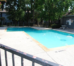 Pool at Listing #139037